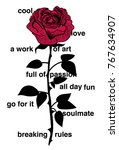 rose illustration with various...