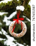Small photo of Homemade suet cake hanging on tree in winter. Wild bird feed.