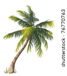 vector illustration of the palm ... | Shutterstock .eps vector #76770763