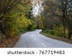 autumn fairytale in the park...   Shutterstock . vector #767719483