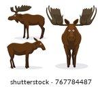 cute moose cartoon vector... | Shutterstock .eps vector #767784487