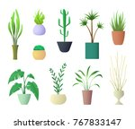 plants interior for home hotel... | Shutterstock .eps vector #767833147