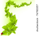 green background | Shutterstock .eps vector #76783357