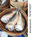 steamed fish and mackerel. | Shutterstock . vector #767874337