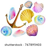 a set of amazing sea shells... | Shutterstock . vector #767895403