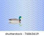 water texture and drake | Shutterstock .eps vector #76863619