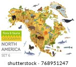 north america flora and fauna... | Shutterstock .eps vector #768951247