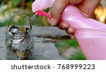plant growing in jar with coins ... | Shutterstock . vector #768999223