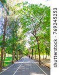 Small photo of Pathway for bike and run in green park ith tree in sunshine day