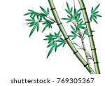 bamboo vector drawing | Shutterstock .eps vector #769305367