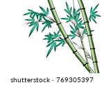 bamboo vector drawing | Shutterstock .eps vector #769305397