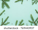spruce branches on a green... | Shutterstock . vector #769443937