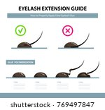 eyelash extension guide. how to ... | Shutterstock .eps vector #769497847