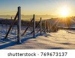 vineyards of barolo in the... | Shutterstock . vector #769673137