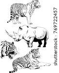 vector drawings sketches... | Shutterstock .eps vector #769722457