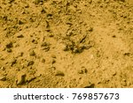 golden mountainous desert of... | Shutterstock . vector #769857673