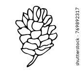 pinecone vector illustration.... | Shutterstock .eps vector #769892317