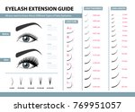eyelash extension guide.... | Shutterstock .eps vector #769951057