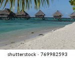 white sand beach and overwater... | Shutterstock . vector #769982593