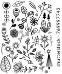set of floral elements vector... | Shutterstock .eps vector #769997743