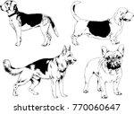 vector drawings sketches... | Shutterstock .eps vector #770060647
