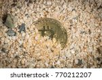 Small photo of Bitcoin Lost In Sands Of Time Concept