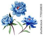 wildflower peony flower in a... | Shutterstock . vector #770318833
