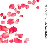 Stock photo pink red rose petals white background isolated object with saved clipping path 770379343