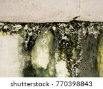Old Wall Paint Peel Caused By...