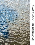 water texture with ripples | Shutterstock . vector #770481943