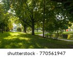 autumn park. trees with... | Shutterstock . vector #770561947