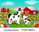 Cute Cow In The Farm