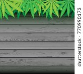 hemp plant cannabis leaves and... | Shutterstock .eps vector #770990173