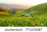 landscape of green mountain ... | Shutterstock . vector #771253387
