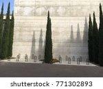 very tall green grass trees... | Shutterstock . vector #771302893