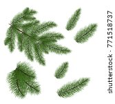 set of christmas tree branches ... | Shutterstock .eps vector #771518737
