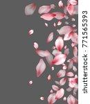 pink japanese cherry flower... | Shutterstock .eps vector #771565393