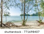 beautiful beach scenery with... | Shutterstock . vector #771698407