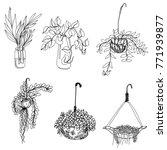 hand drawn mini garden in glass ... | Shutterstock .eps vector #771939877