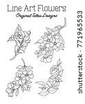 vector line art flowers... | Shutterstock .eps vector #771965533