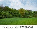 rural landscape. field and... | Shutterstock . vector #771976867