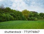 rural landscape. field and... | Shutterstock . vector #771976867