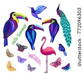 colored abstract exotic birds... | Shutterstock . vector #772096303
