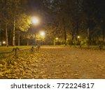 lanterns illuminate alleys in a ... | Shutterstock . vector #772224817