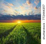 natural landscape. field of... | Shutterstock . vector #772444357