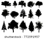 silhouettes of trees on a white ... | Shutterstock . vector #772591957