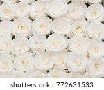 Stock photo white roses background texture 772631533