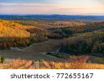 scenery of siena countryside in ... | Shutterstock . vector #772655167