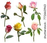 illustration of beautiful... | Shutterstock . vector #772663963