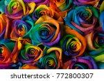 rainbow roses 1   Shutterstock . vector #772800307